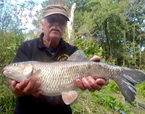David Greatbach 6lb 1 oz Chub